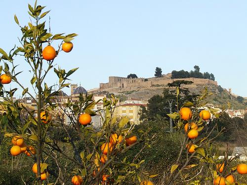 onda naranjas